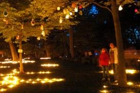 Zeitzer Lichterfest 2017