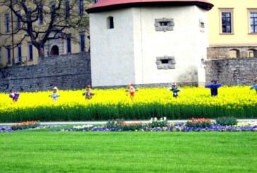 Streifzug durch den Burgenlandkreis