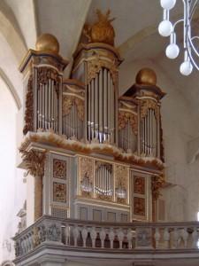 Eule Orgel