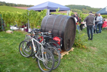Abradeln entlang der Weinroute.
