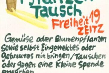 29.5./16:00/Kleiner Rahmen: Kleinpflanzentausch & Jazz