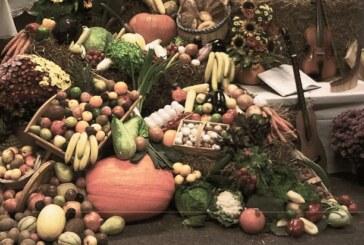 5.10.14/10:00/Schlosspark: Herbstmarkt zum Erntedank