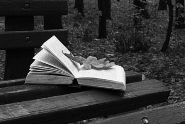 Stadtbibo freut sich über Buchspende