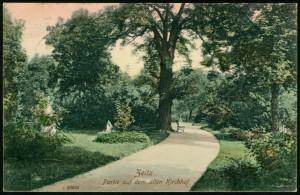 1908-Reinicke + Rubin 26023c