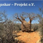 MADAGASKAR. Ein Paradies das keines ist.
