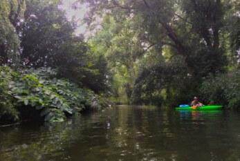 Weiße Elster wird Flusslandschaft des Jahres