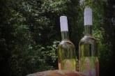 Weinfest und Musikalischer Autoherbst