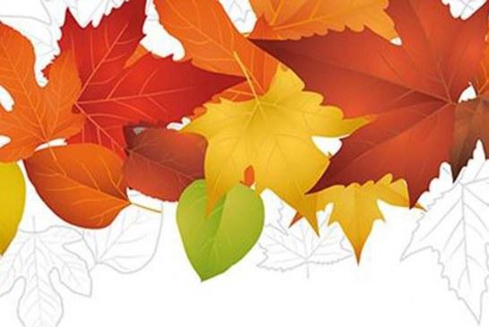 Herbstmarkt zum Erntedank