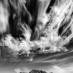 Glanzlichter der Naturfotografie