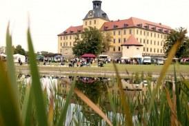 12. Zeitzer Weinfest und Autoherbst