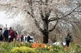 Frühlingsmarkt, 5. April, 10:00, Schlosspark