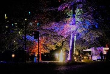 Lichterfest im Gartentraum