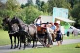 Schlosspark Zeitz – Geführte Entdeckungstouren