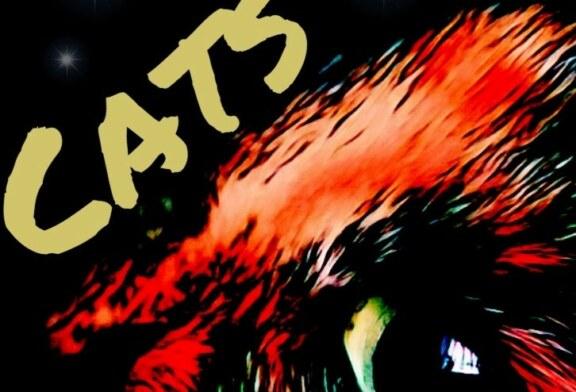 """""""CATS"""", 7., 8., 28. u. 29.03.20, Klinkerhallen"""