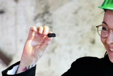 Kohle für die Brikettfabrik