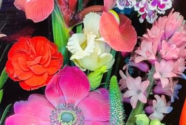 Ein Garten ist die Welt-Die Künste ihre Lust